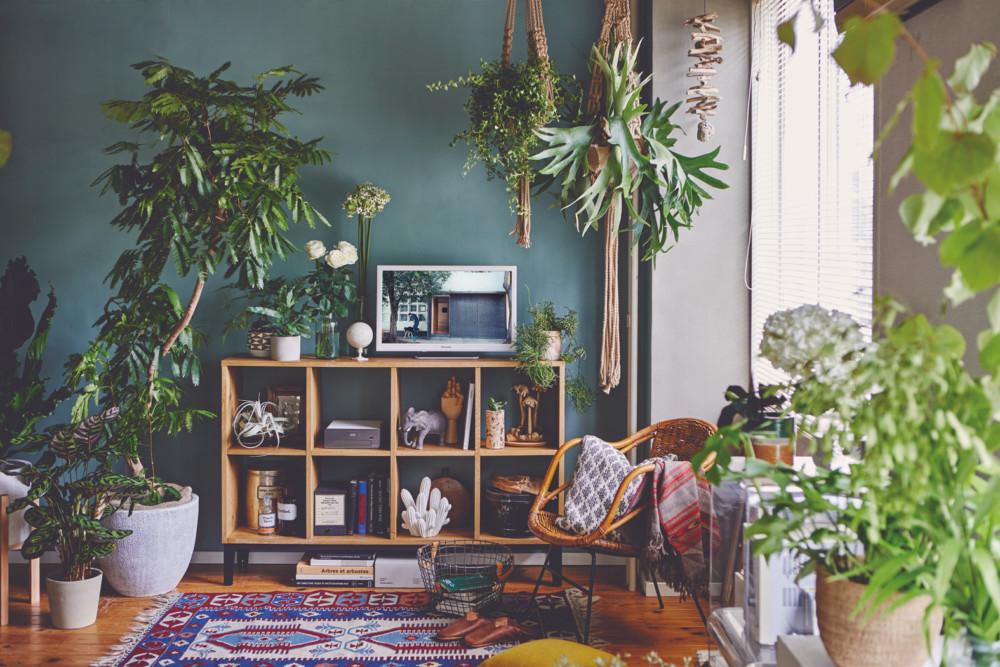 LIVING ROOM  bulbus 空間装飾   SYO TANii